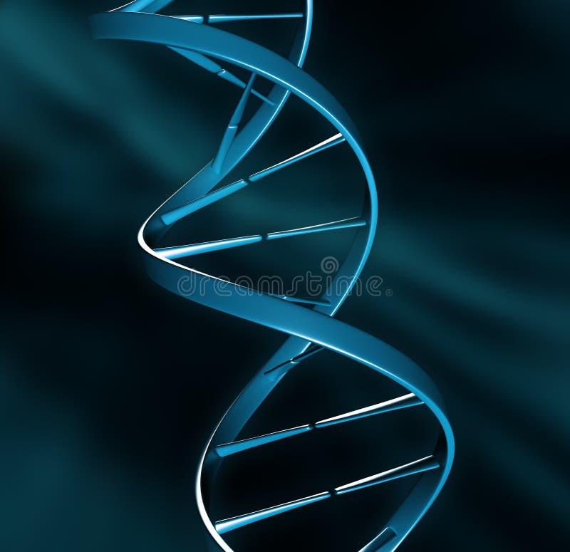 σκέλος απεικόνισης DNA ελεύθερη απεικόνιση δικαιώματος