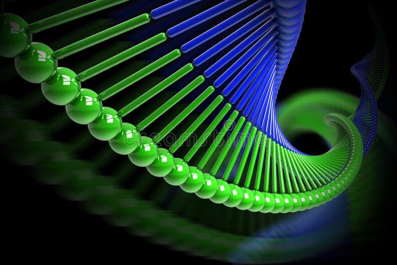 σκέλος DNA διανυσματική απεικόνιση