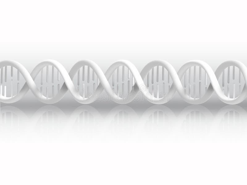Σκέλος DNA ελεύθερη απεικόνιση δικαιώματος