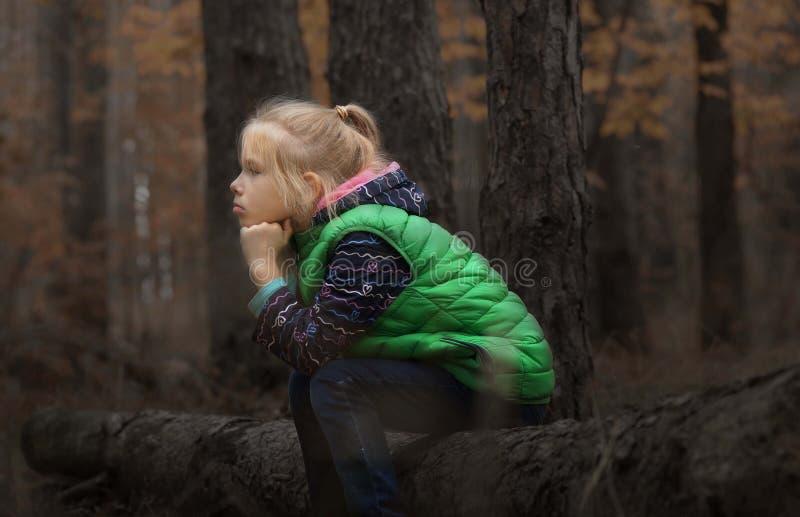 Σκέφτεται στο δάσος στοκ φωτογραφία με δικαίωμα ελεύθερης χρήσης