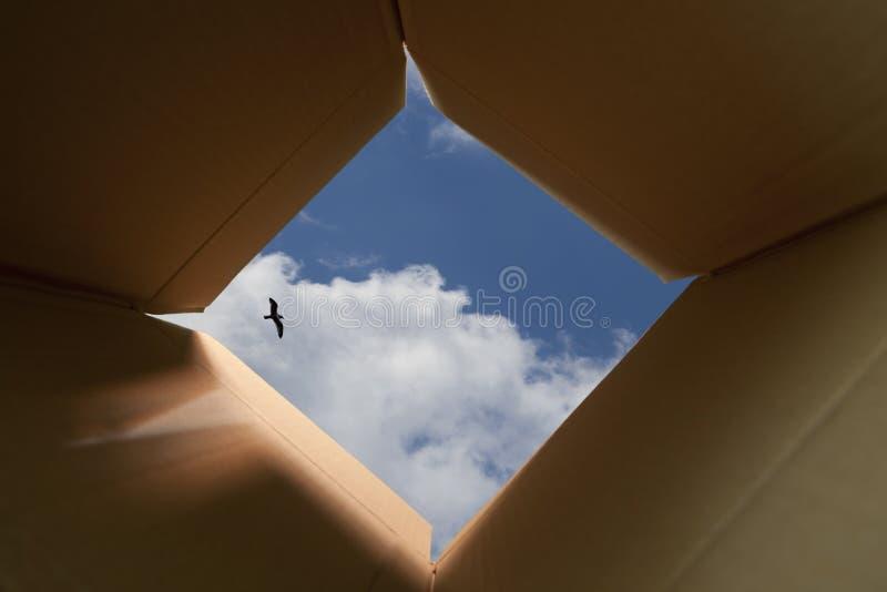 Σκέψη έξω από την έννοια κιβωτίων στοκ φωτογραφίες