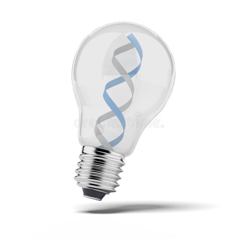 Σκέλος DNA στο βολβό ελεύθερη απεικόνιση δικαιώματος