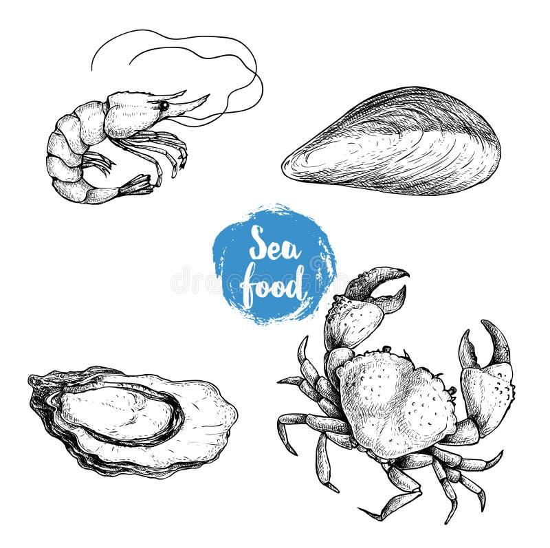 Σκίτσα θαλασσινών καθορισμένα Φρέσκα γαρίδες, μύδι, στρείδι και καβούρι Συλλογή προϊόντων αγοράς θάλασσας επίσης corel σύρετε το  διανυσματική απεικόνιση