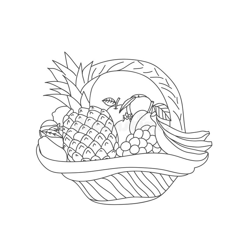Σκίτσο καλαθιών με τα φρούτα σε ένα άσπρο υπόβαθρο ελεύθερη απεικόνιση δικαιώματος