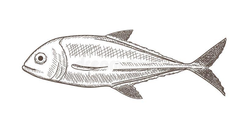 Σκίτσο ψαριών στοκ φωτογραφία με δικαίωμα ελεύθερης χρήσης