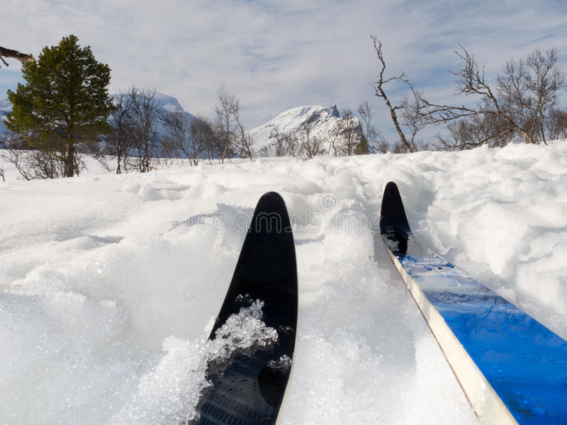 σκανδιναβικό να κάνει σκι στοκ φωτογραφία με δικαίωμα ελεύθερης χρήσης