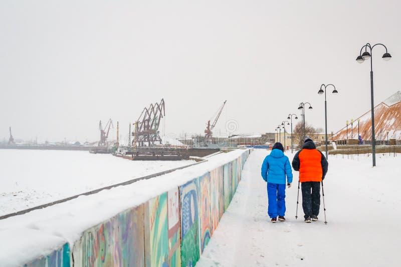 Σκανδιναβικό περπάτημα το χειμώνα στοκ εικόνα