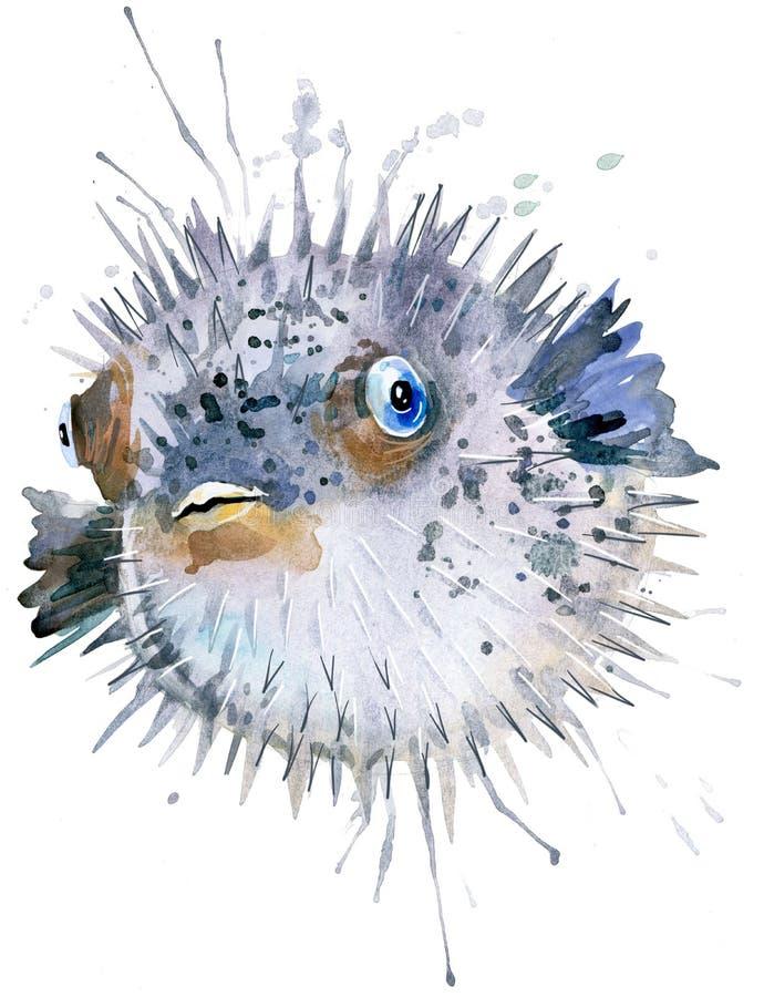 Σκαντζόχοιρος ψαριών Απεικόνιση watercolor σκαντζόχοιρων ψαριών Υποβρύχια λέξη διανυσματική απεικόνιση