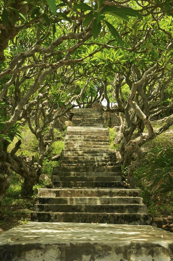 Σκαλοπάτια στο φάρο της KE GA, Βιετνάμ, Phan Thiet στοκ εικόνα με δικαίωμα ελεύθερης χρήσης