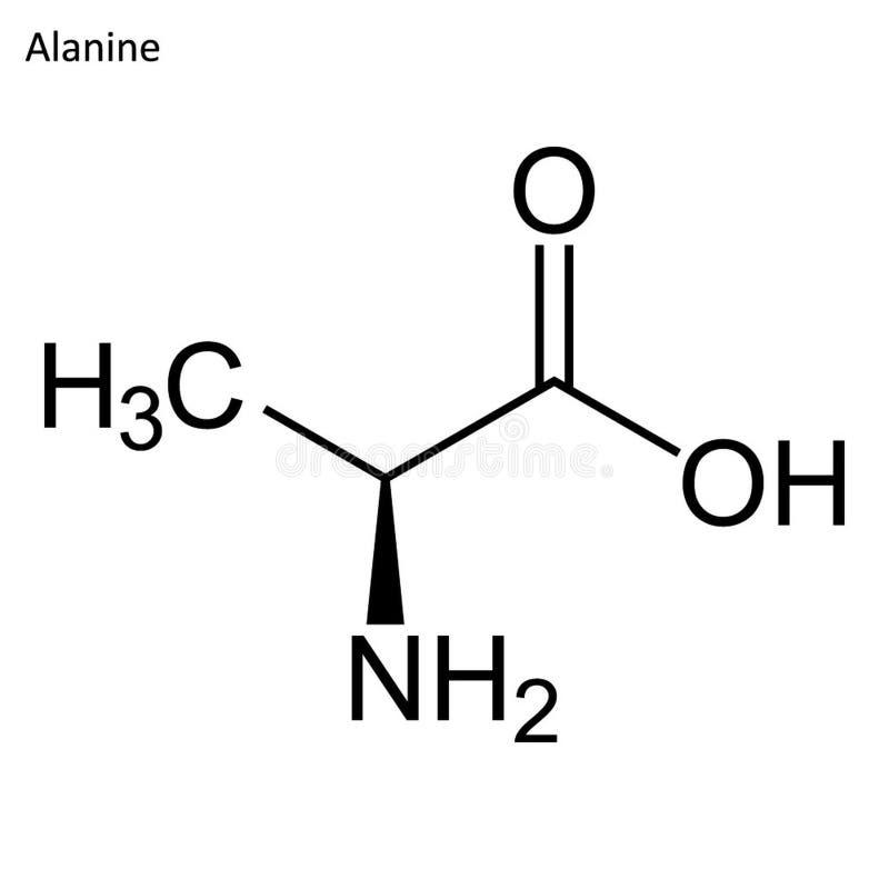 Σκελετικός τύπος της αλανίνης ελεύθερη απεικόνιση δικαιώματος