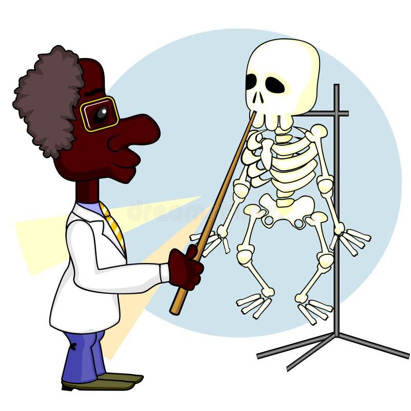 σκελετός επιστημόνων ελεύθερη απεικόνιση δικαιώματος
