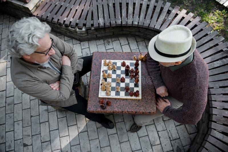 Σκεπτικά ανώτερα άτομα που παίζουν το σκάκι στο πάρκο στοκ φωτογραφίες με δικαίωμα ελεύθερης χρήσης