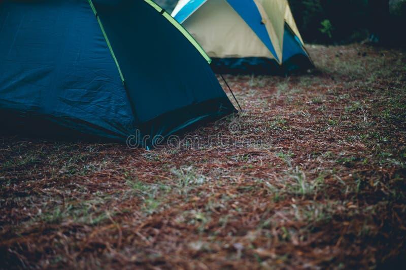 Σκηνές και στέγαση των τουριστών Ύπνος στο δάσος στο τ στοκ εικόνα με δικαίωμα ελεύθερης χρήσης