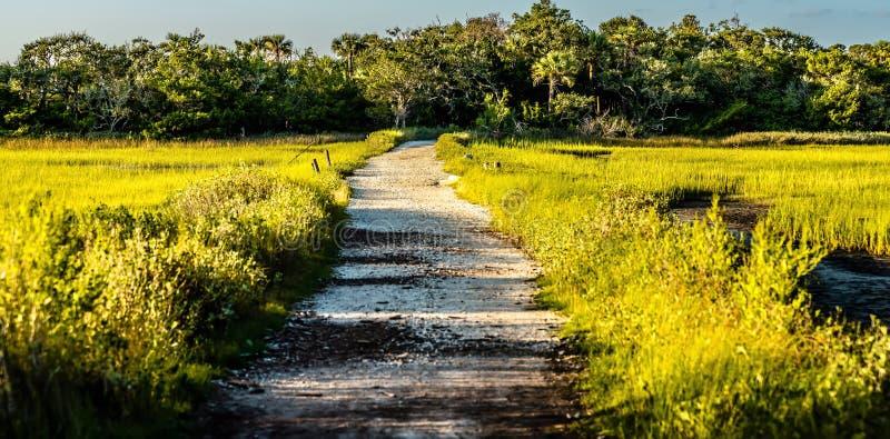 Σκηνές στη φυτεία κόλπων βοτανικής κοντά στη νότια Καρολίνα του Τσάρλεστον στοκ φωτογραφία με δικαίωμα ελεύθερης χρήσης