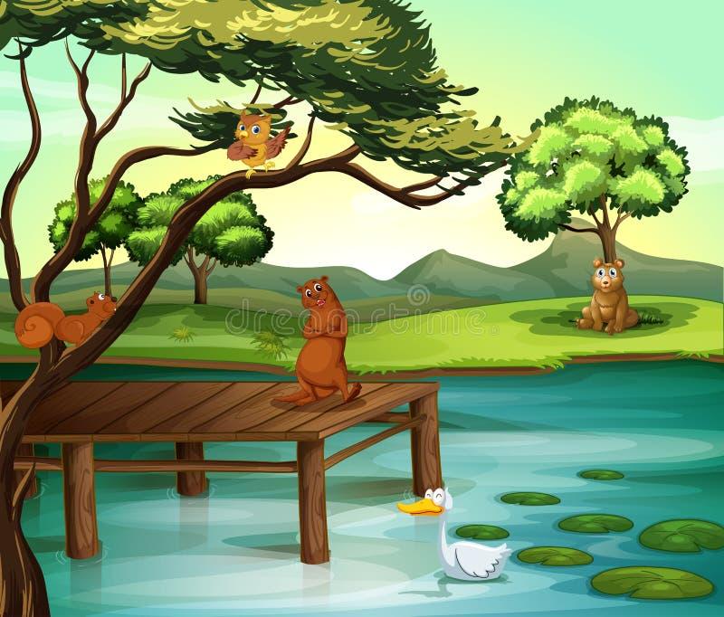Σκηνή λιμνών απεικόνιση αποθεμάτων