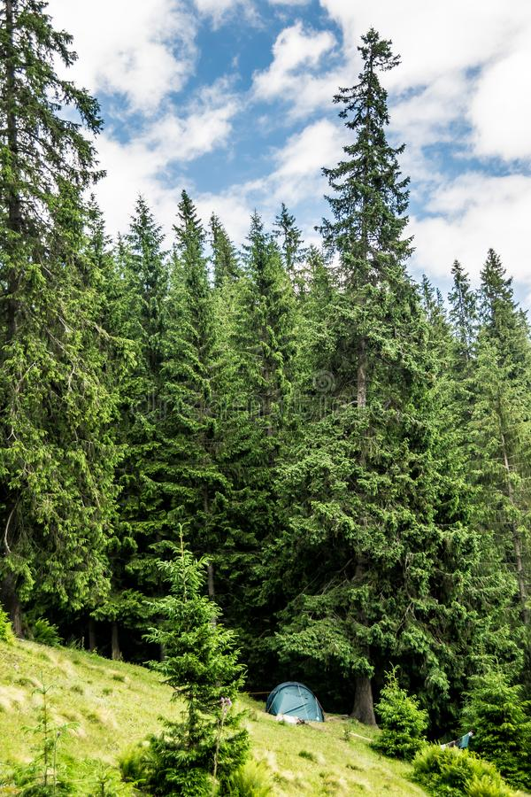 Σκηνή κοντά στο δάσος στοκ φωτογραφία με δικαίωμα ελεύθερης χρήσης