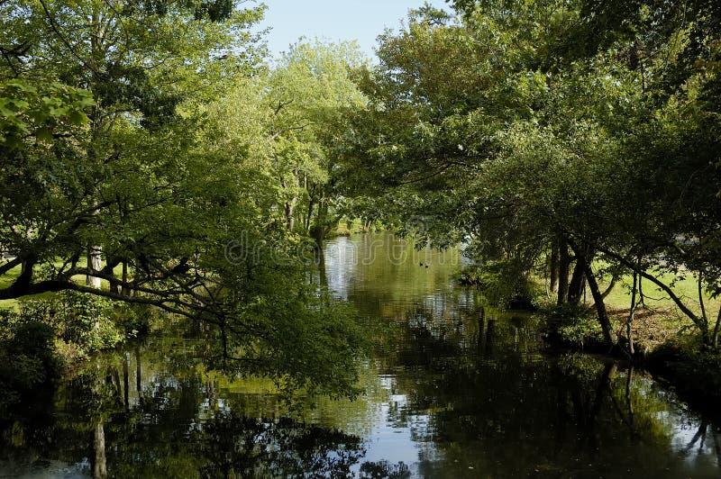 σκηνή λιμνών στοκ φωτογραφίες με δικαίωμα ελεύθερης χρήσης