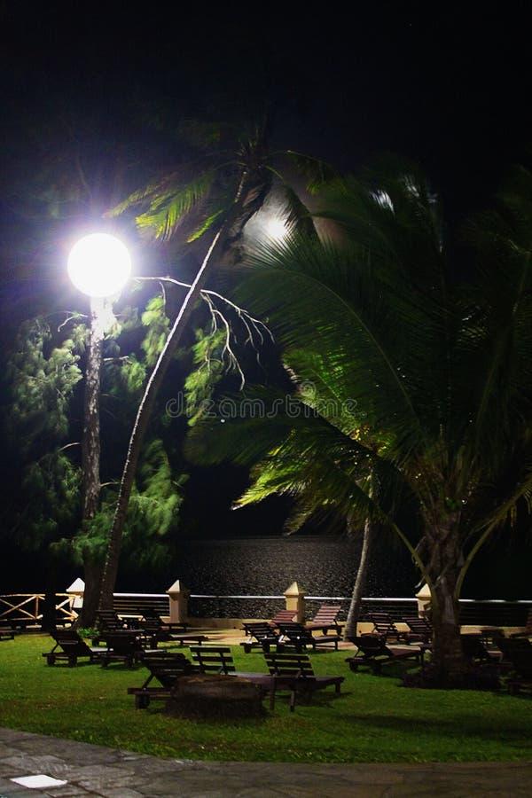 Σκηνή νύχτας από την παραλία με μια άποψη του ωκεανού στοκ εικόνα