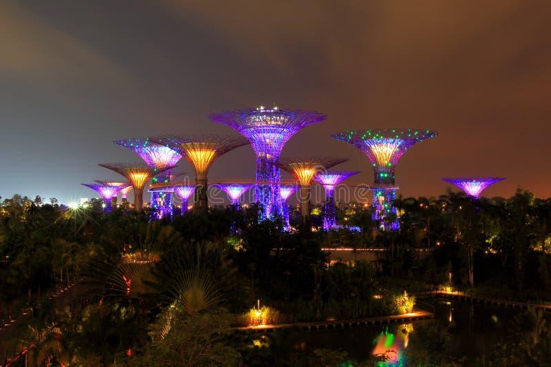 Σκηνή νύχτας των κήπων από τον κόλπο σε Σινγκαπούρη στοκ εικόνες