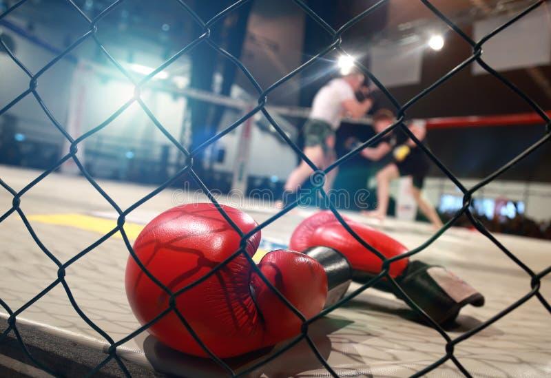 Σκηνή πάλης MMA στοκ φωτογραφία