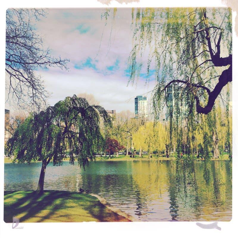 Σκηνή πάρκων της Βοστώνης στοκ φωτογραφία με δικαίωμα ελεύθερης χρήσης