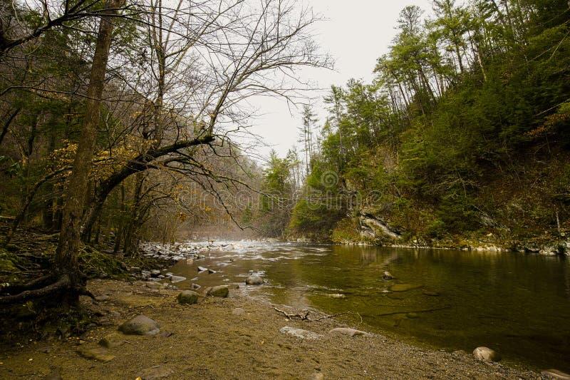 Σκηνή ποταμών στο μεγάλο καπνώές εθνικό πάρκο βουνών, Ηνωμένες Πολιτείες της Αμερικής στοκ φωτογραφία με δικαίωμα ελεύθερης χρήσης