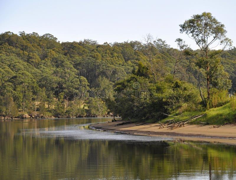 Σκηνή ποταμών Shoalhaven στοκ φωτογραφίες