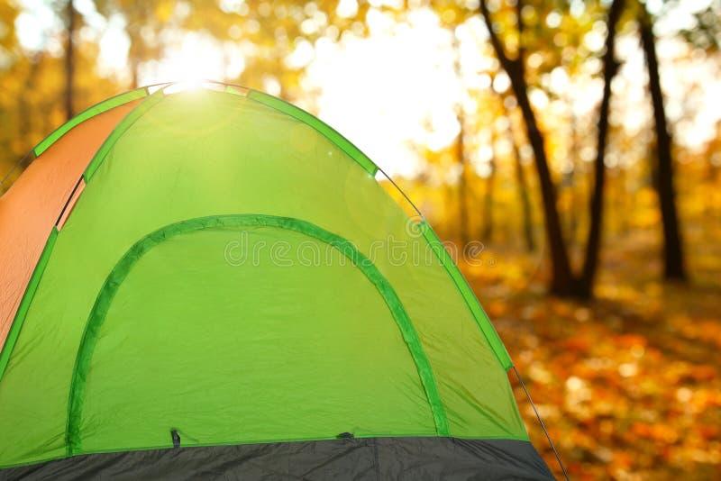 Σκηνή στρατοπέδευσης στο δάσος φθινοπώρου την ηλιόλουστη ημέρα στοκ φωτογραφία με δικαίωμα ελεύθερης χρήσης