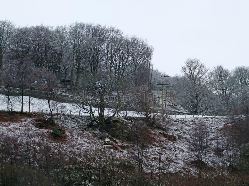 Σκηνή χιονιού με τον πάγο στα παγωμένα δασικά δέντρα και τομείς βουνοπλαγιών με έναν τοίχο πετρών που οριοθετεί μια πάροδο χωρών στοκ φωτογραφία με δικαίωμα ελεύθερης χρήσης