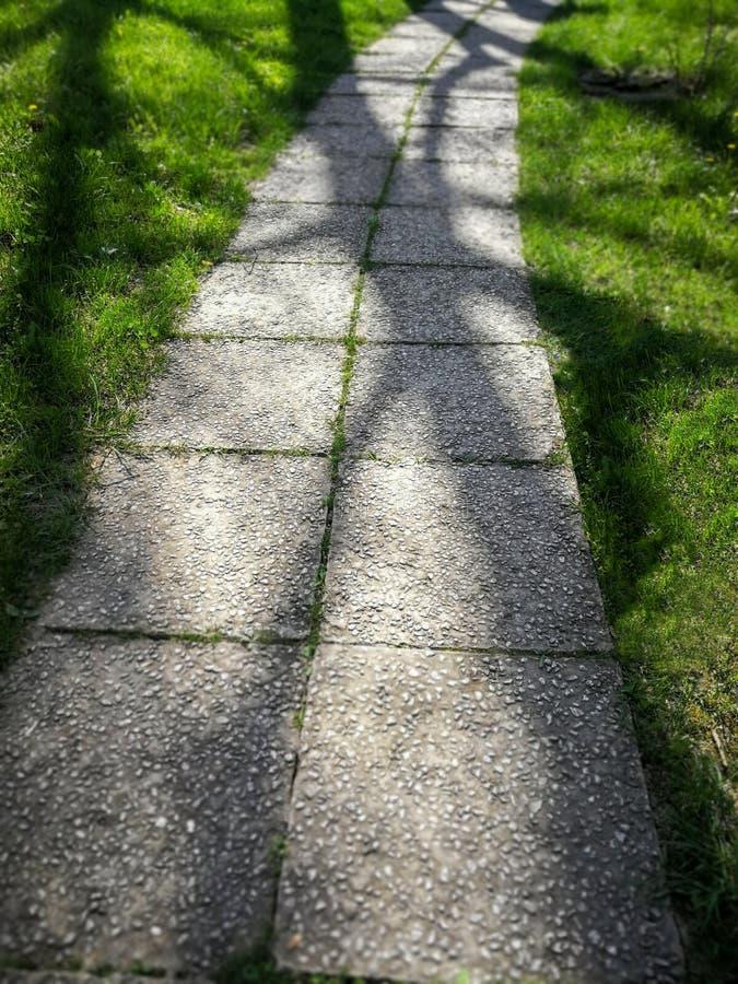 Σκιά δέντρων σε έναν πράσινο δρόμο στοκ εικόνες με δικαίωμα ελεύθερης χρήσης