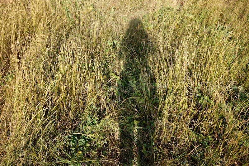 Σκιά ενός κοριτσιού στη χλόη στοκ φωτογραφία με δικαίωμα ελεύθερης χρήσης
