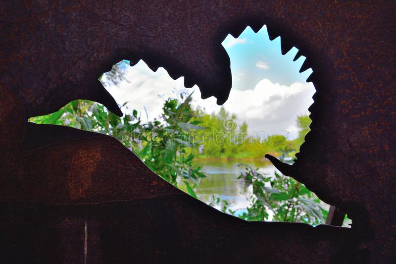 Σκιά μιας πάπιας, που αγνοεί μια όμορφη λίμνη σε Heusden, Γάνδη στοκ εικόνες με δικαίωμα ελεύθερης χρήσης