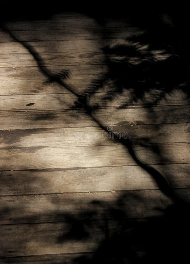 Σκιά των δέντρων στοκ φωτογραφία με δικαίωμα ελεύθερης χρήσης