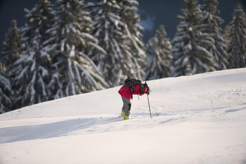 Σκιέρ που στηρίζεται στο βαθύ χιόνι μετά από ψυχαγωγικό να κάνει σκι στοκ φωτογραφία