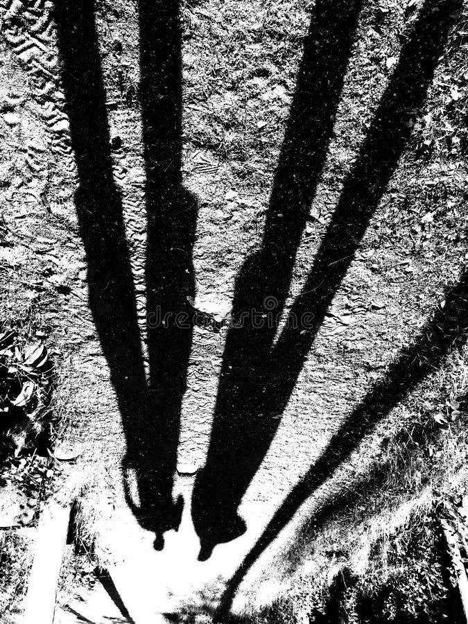 Σκιές δύο ατόμων στοκ εικόνα
