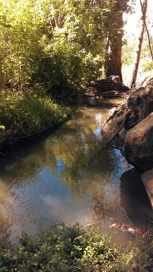 Σκιές στον ποταμό στοκ φωτογραφία