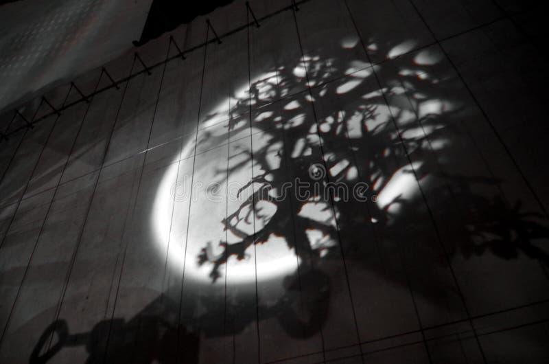 σκιές στοκ φωτογραφία με δικαίωμα ελεύθερης χρήσης