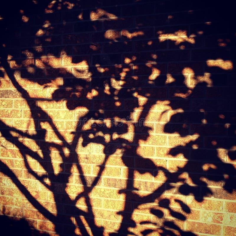 σκιές στοκ φωτογραφία