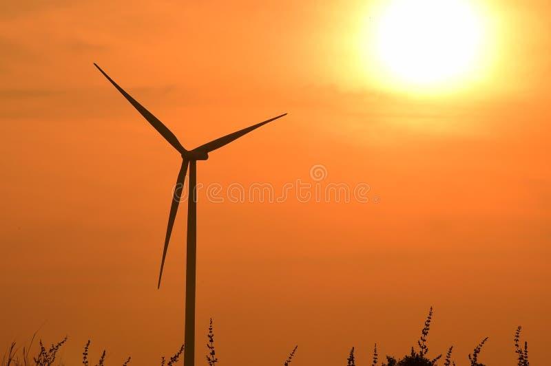 Σκιαγραφία ανεμοστροβίλων στο ηλιοβασίλεμα στοκ φωτογραφίες