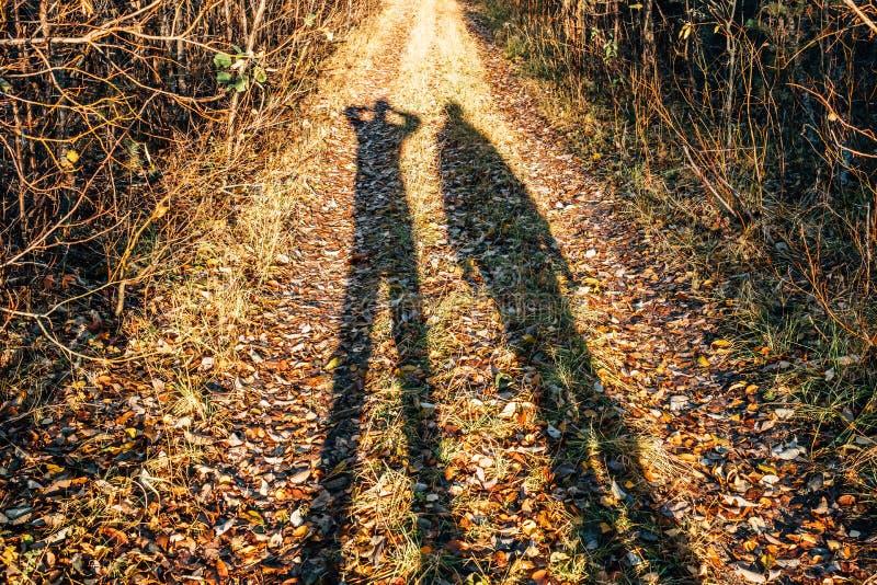 Σκιαγραφία δύο νέων που στέκεται στο δασικό δρόμο στοκ φωτογραφίες