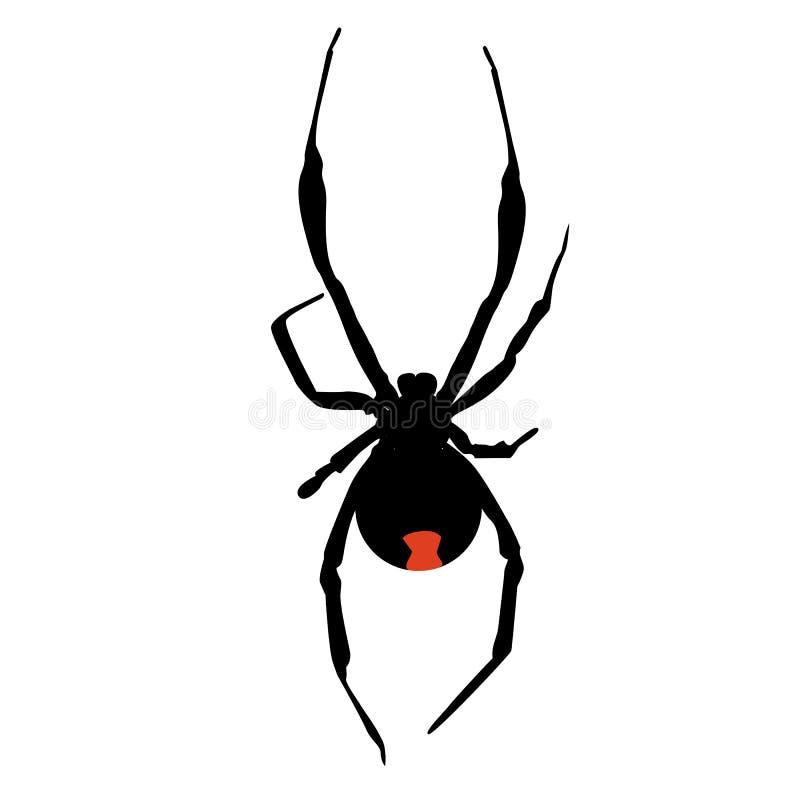 Σκιαγραφία εικονιδίων μιας δηλητηριώδους μαύρης αράχνης χηρών Πρότυπο ελεύθερη απεικόνιση δικαιώματος