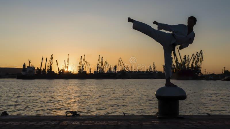 Σκιαγραφία ενός μαχητή taekwondo σε ένα ηλιοβασίλεμα πέρα από τη θάλασσα στοκ φωτογραφίες