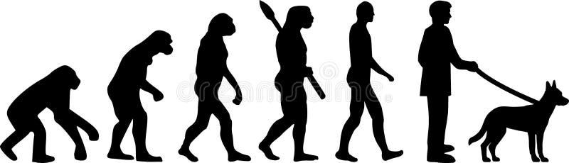 Σκιαγραφία εξέλιξης Malinois απεικόνιση αποθεμάτων