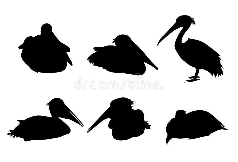 Σκιαγραφία-διάνυσμα πουλιών πελεκάνων διανυσματική απεικόνιση