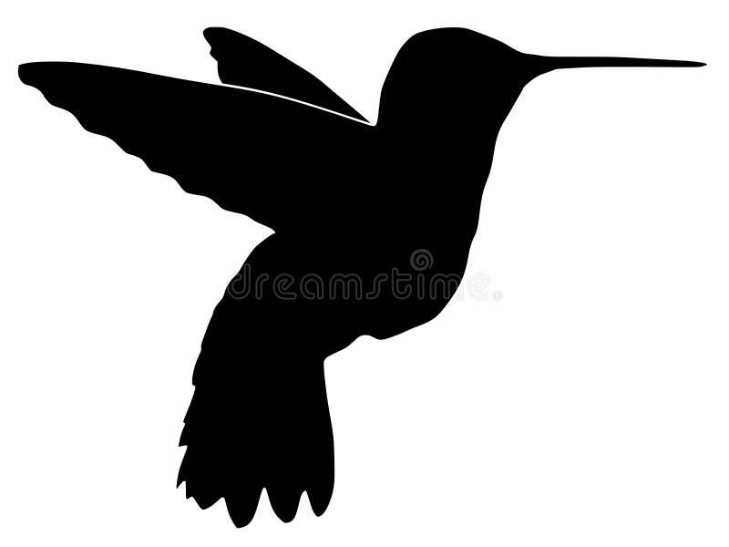 σκιαγραφία κολιβρίων ελεύθερη απεικόνιση δικαιώματος