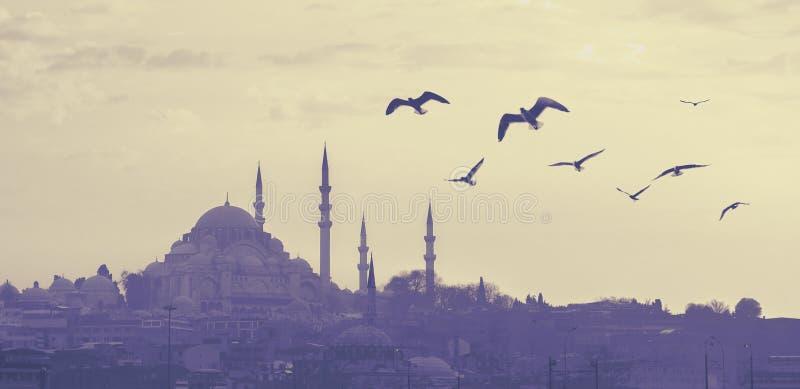 Σκιαγραφία μουσουλμανικών τεμενών Suleymaniye στοκ φωτογραφία