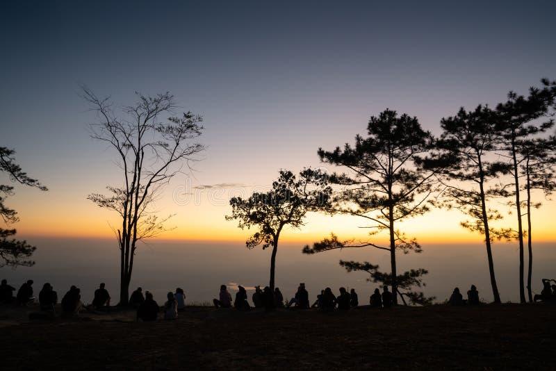 Σκιαγραφία ομάδας ανθρώπων που περιβάλλεται από τα δέντρα πεύκων στοκ εικόνες