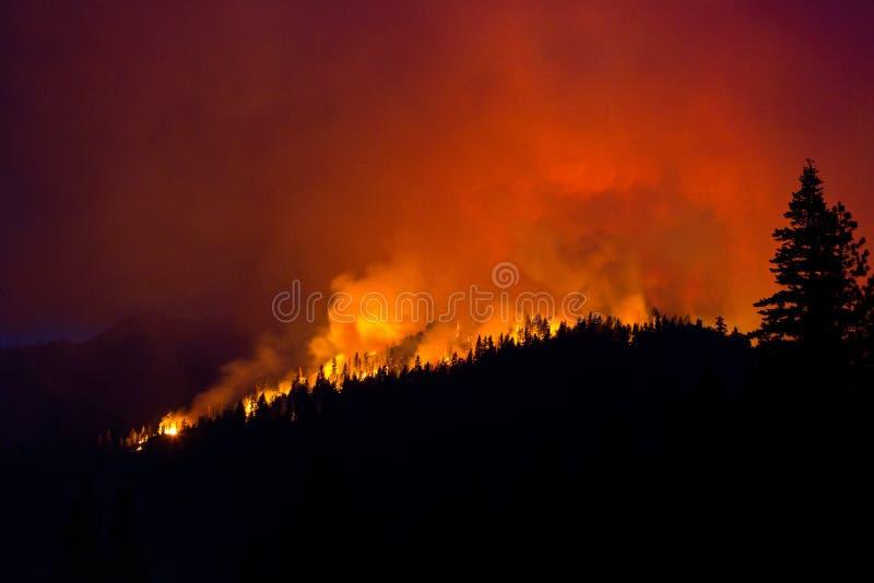 Σκιαγραφία πυρκαγιών στοκ φωτογραφία