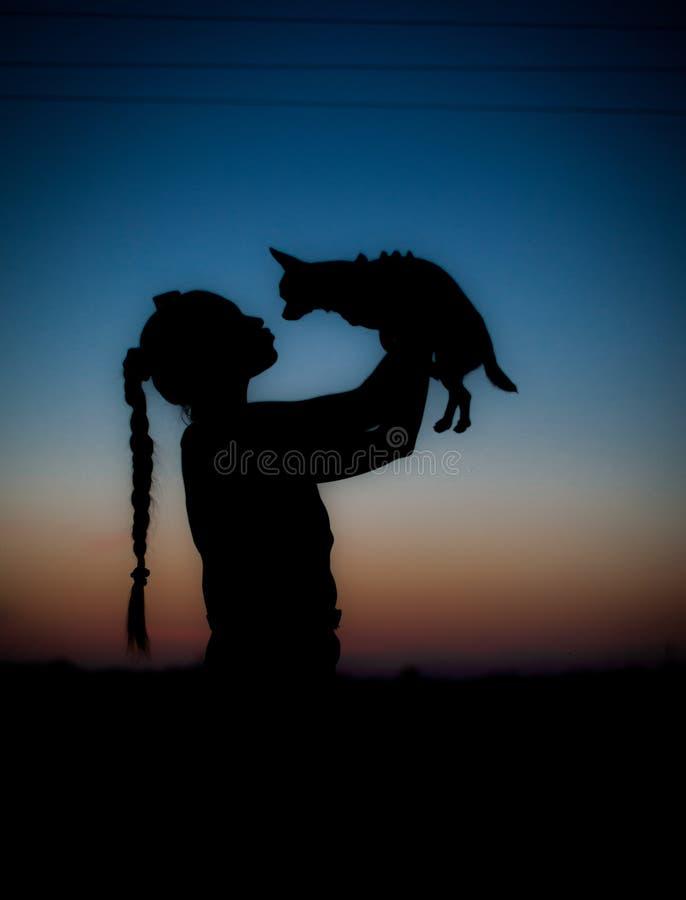 Σκιαγραφία του νέου κοριτσιού και της λίγο σκυλί στο ηλιοβασίλεμα στοκ εικόνες με δικαίωμα ελεύθερης χρήσης