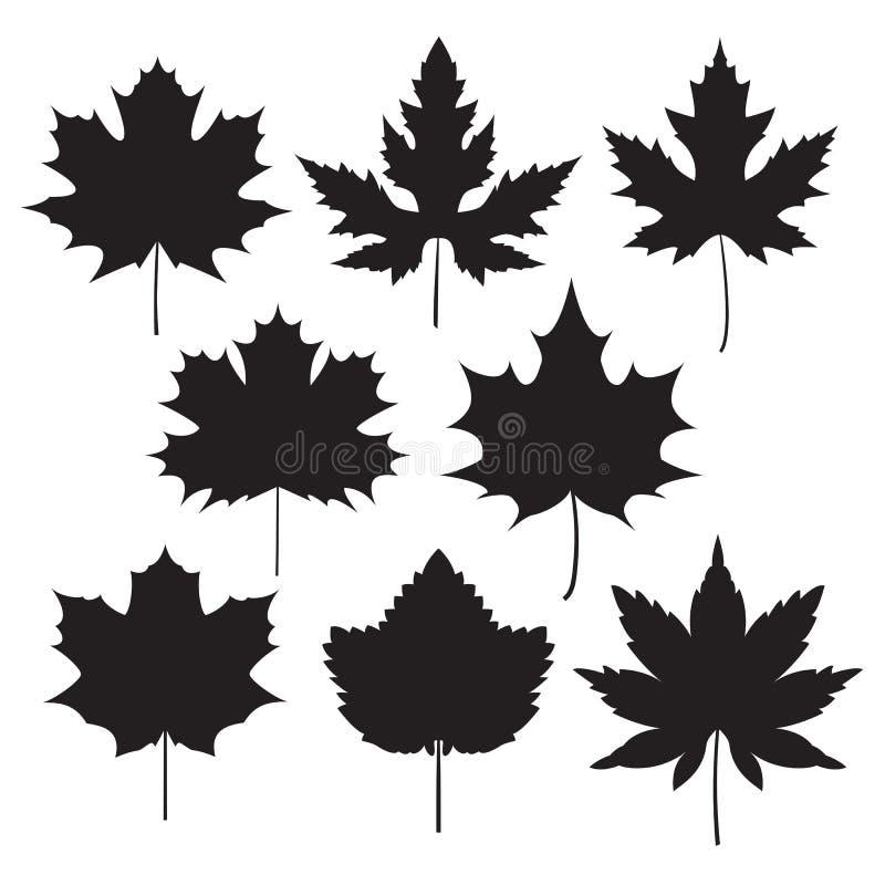 Σκιαγραφία του φύλλου σφενδάμου ελεύθερη απεικόνιση δικαιώματος